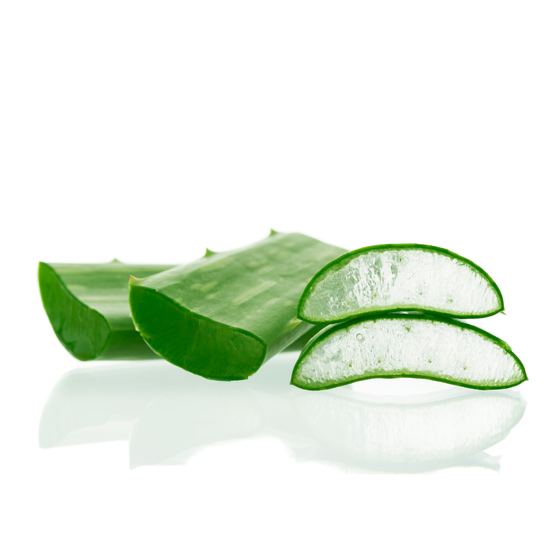 Aloe Barbadensis Leaf Extract - Aloe Barbadensis Leaf Extract
